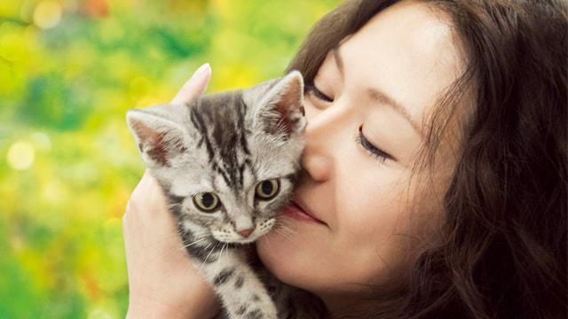 【動物映画】動物たちとのハートウォーミングな物語を一挙ご紹介!